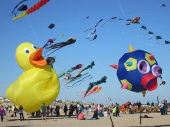 Field of kites 3
