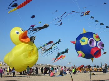 Field of kites 3